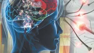 Эпилепсия у взрослых причины и симптомы
