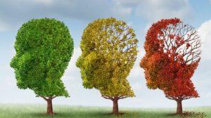 Болезнь Альцгеймера симптомы и признаки лечение профилактика