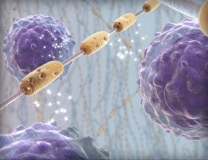 Рассеянный склероз причины возникновения клинические признаки срок жизни пациента