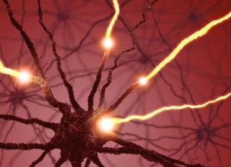 Боковой амиотрофический склероз симптомы принципы диагностики и лечения