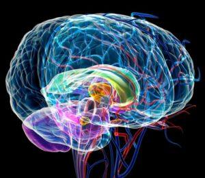 Медленные вирусные инфекции центральной нервной системы симптомы и лечение