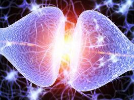Серотониновый синдром симптомы и лечение