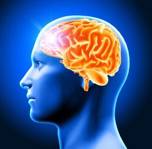 Отек и набухание головного мозга реферат 6728