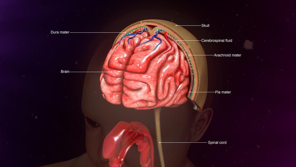 Менингиома симптомы лечение признаки и диагностика